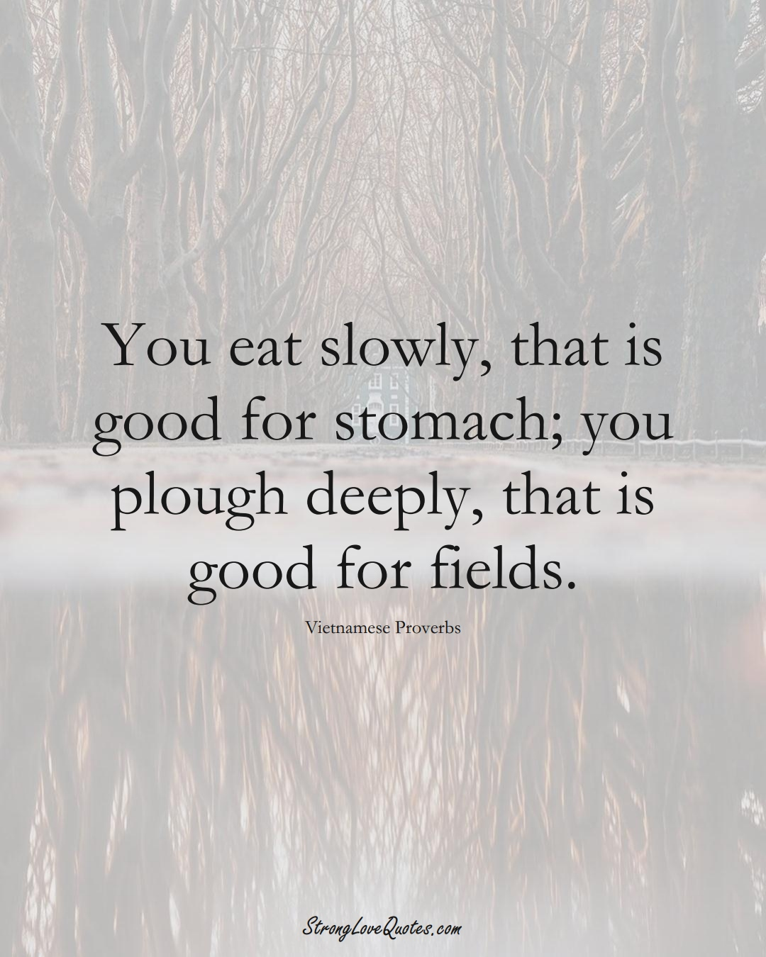 You eat slowly, that is good for stomach; you plough deeply, that is good for fields. (Vietnamese Sayings);  #AsianSayings
