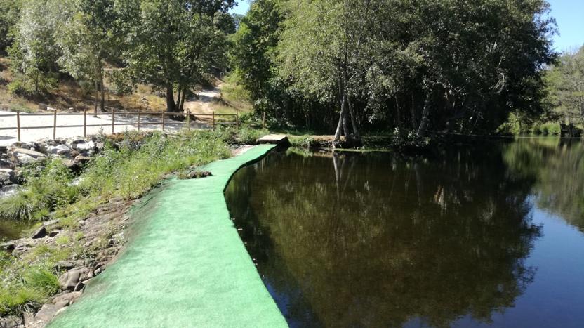 Passagem entre margem com tapete verde