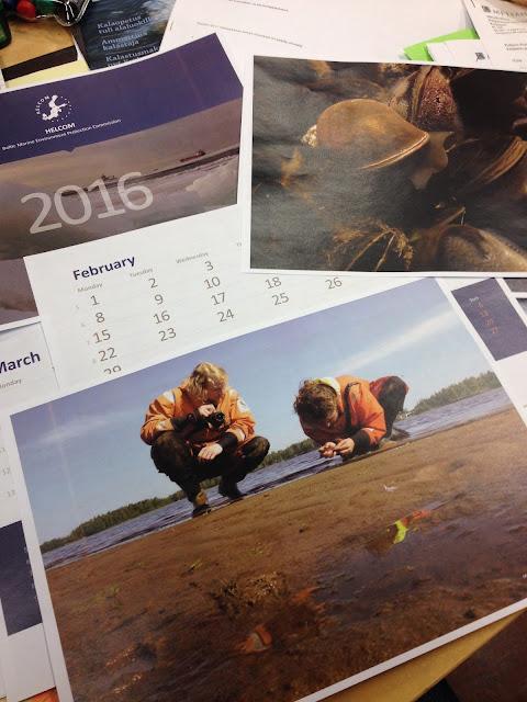 Printattuja valokuva- ja kalenterikuvia kotilosta ja ihmisistä kyyristyneenä tutkimaan mutarantaa