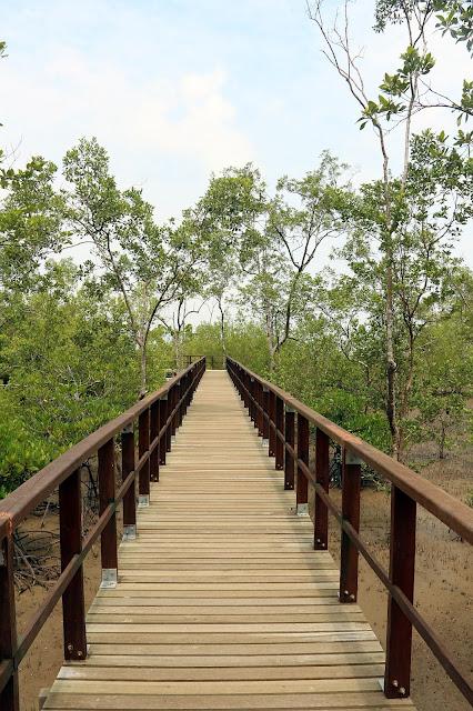 Jembatan kayu penghubung di Bako National Park