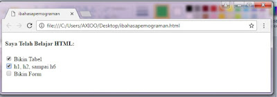 membuat checkbox pada html