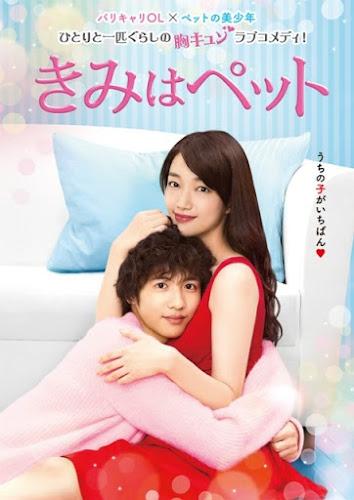 poster for Kimi wa Petto 2017 starring Iriyama Noriko and Shison Jun