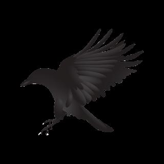 crow, Akbar Birbal Story In Marathi