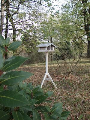 Les oiseaux se bousculent dans la cabane ;)