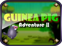 GamesClicker Guinea Pig Adventure II