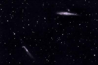 """NGC4631, """"galàxia la Balena"""" i NGC4656 """"Pal de Hockey"""" a Canes Venatici."""