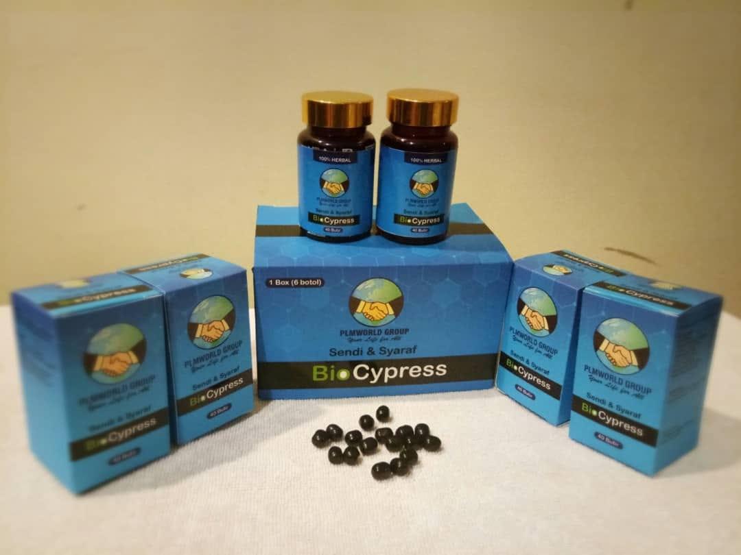 Harga Branking Plus 2018 Bio Cypress Obat Sakit Sendi Dan Saraf 08165428190wa Bking Murah Biocypress Surabaya Herbal