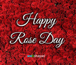 happy rose day photo for valentines week