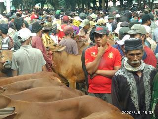 Pasar Hewan Kota Probolinggo Resmi Ditutup Sampai Batas Waktu yang Tidak Ditentukan