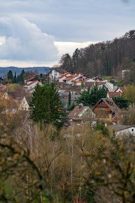 Pfälzer Mandelpfad | Etappe 05 Edenkoben – Birkweiler | Wandern Südliche Weinstraße | Mandelblüte Pfalz 11