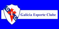 Resultado de imagem para Galícia Esporte Clube
