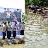 Kapolda Dan Wakapolda Sulsel Dan PJU, Panen Raya Udang dan Ikan Nila