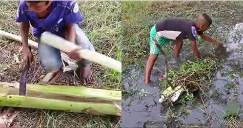 """#ตะลึงตาค้าง..!! 2 หนุ่มน้อย ถือมีดเข้าป่า ฟัน """"ต้นกล้วย"""" นึกว่าเอาไปแกง! ที่ไหนได้ กลับเอาต้นกล้วย """"แช่น้ำ"""" รุ่งเช้าตื่นมาดู โอ้โห… ได้ผลลัพท์สุดทึ่ง (มีคลิป)"""