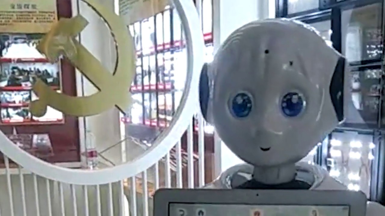 Lily: The Robot