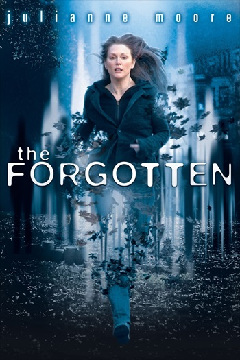 Download The Forgotten 2004 Dual Audio Hindi 720p WEBRip 700mb