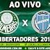Assistir Palmeiras x Godoy Cruz Ao Vivo Online