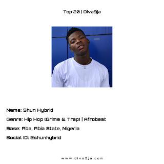 Shun Hybrid Top 20 Diva9ja