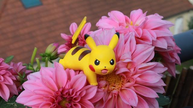 ¡'Pokémon NO'! Aseguran que el juego viral expone a los niños a riesgos de abusos sexuales