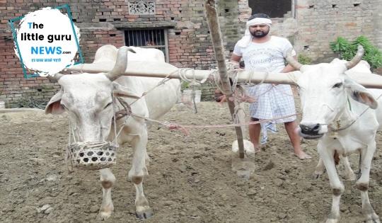 किसान कभी नही चाहता की मेरा बेटा किसान बने: ललन सिन्हा