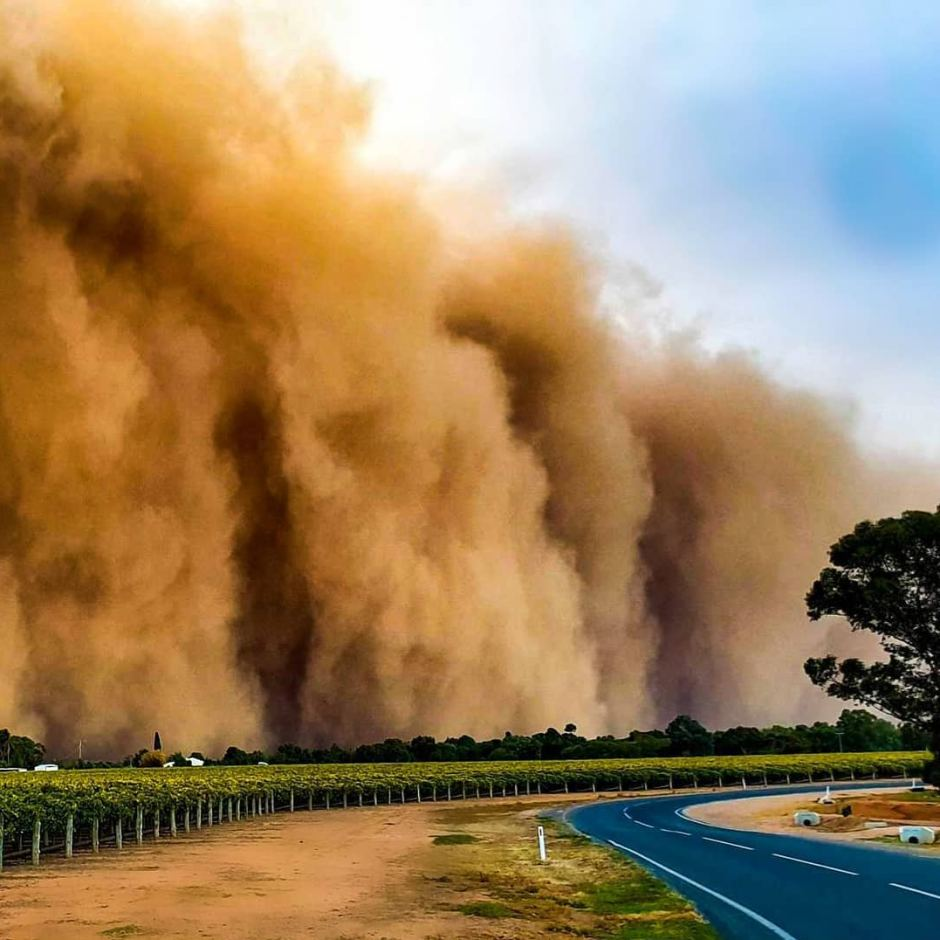 Image result for pictures of mildura in the dust storm
