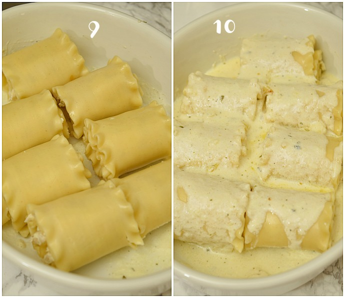 how to make chicken alfredo lasagna  rolls