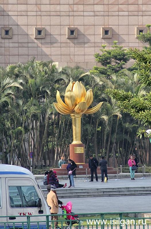 Zolotoj-cvetok-lotosa-v-polnom-cvete-Gorod-Makao-Kitaj