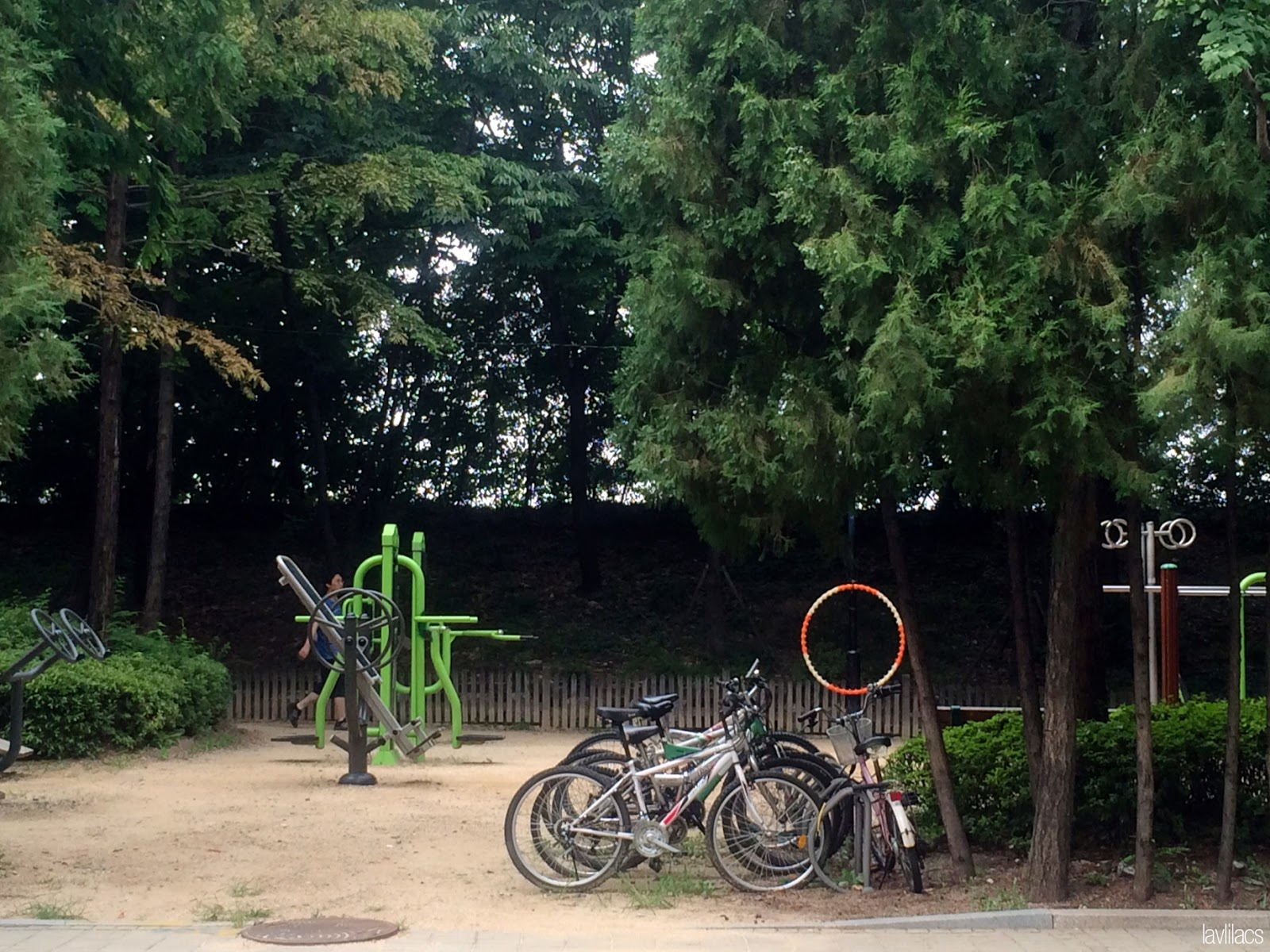 Seoul, Korea - Summer Study Abroad 2014 - Exercise equipment in parks