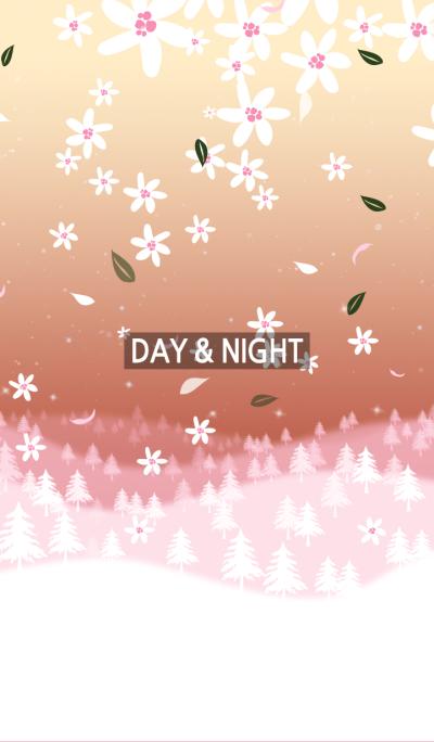 day & night 20