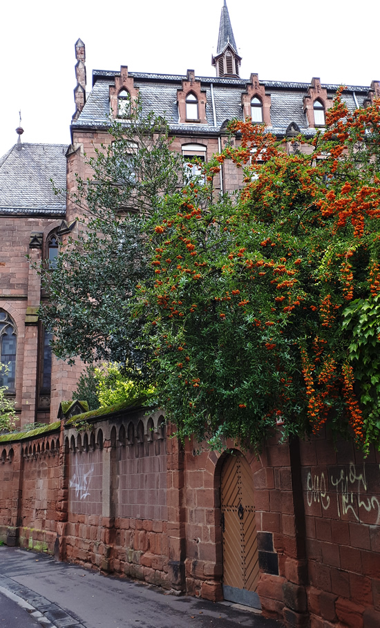 Autumn in Trier, Germany | Happy in Red