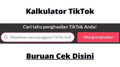 Intip Berapa Gaji Penghasilan Tiktokers Indonesia Gis Infomedia