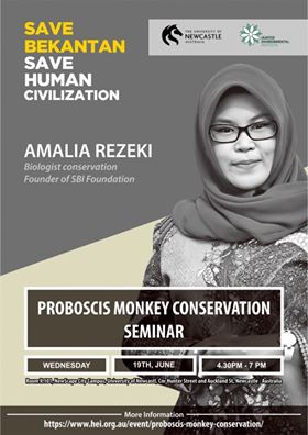 Proboscis Monkey Conservation