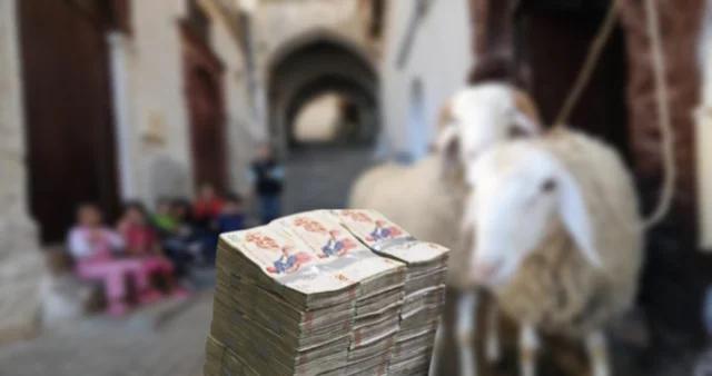 مساعدات مالية للعائلات المعوزة ومحدودة الدخل بمناسبة عيد الإضحى..التفاصيل