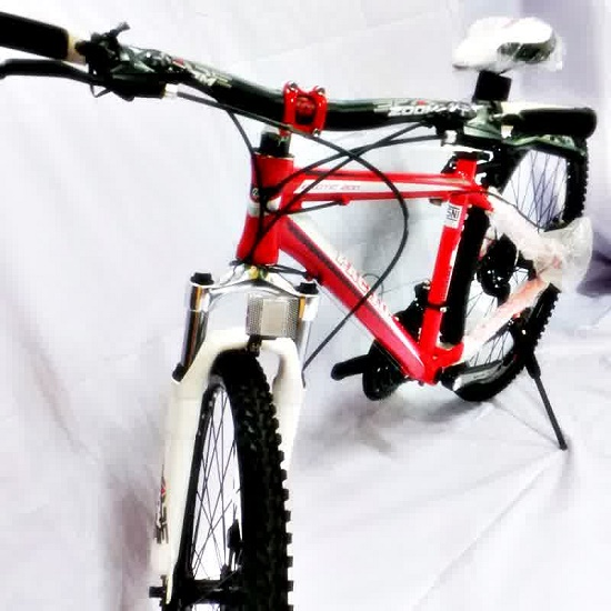 Spesifikasi dan harga sepeda gunung Pacific Exotic 200