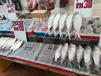 Ikan,Terubok,Masin,Sarawak,pasar Satok,dimana nak beli ikan terubok masin