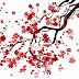 【宝童茶会スペシャル】花鎮の縁日【ZOOMでライブビューイング。個人鑑定と遠隔参拝のご案内】