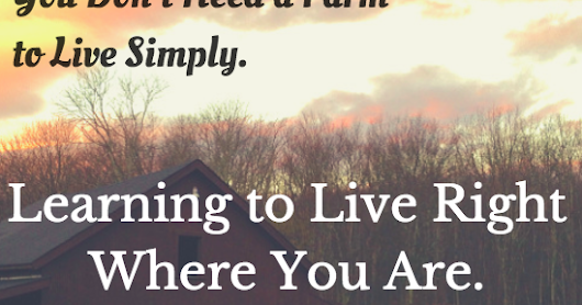 Simply Living...For Him: You Don't Need a Farm to Live Simply. Learning to Live Right Where You Are