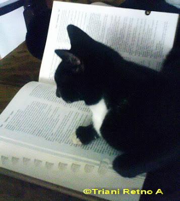 apa yang dimaksud dengan buku bergizi