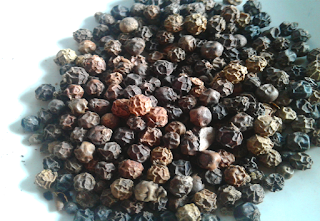 Black Pepper or kaali mirch
