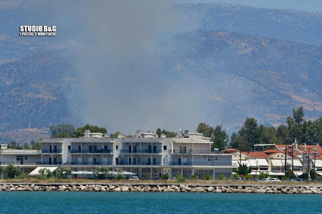 Αργολίδα: Πυρκαγιά στην Αγία Τριάδα Ναυπλίου