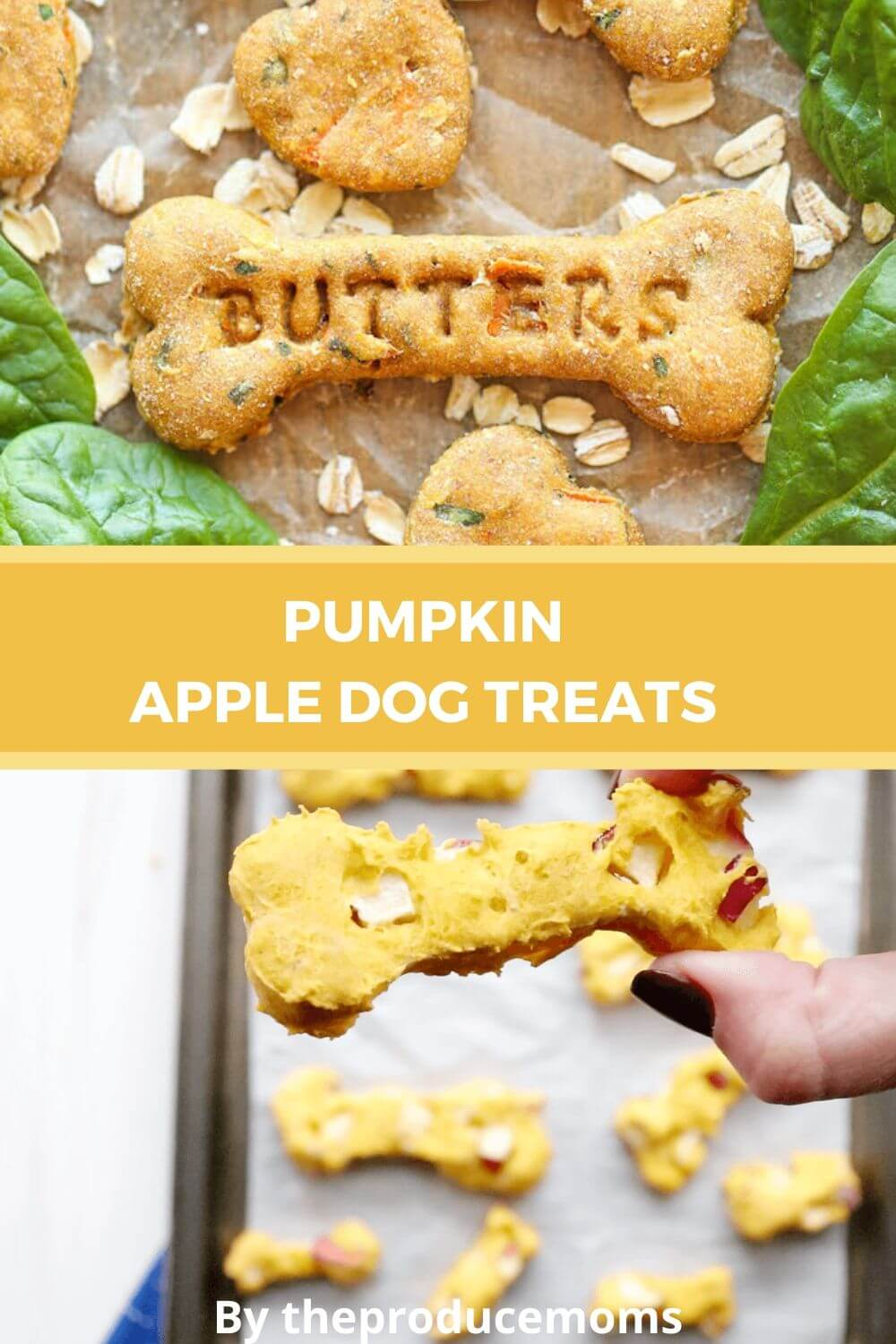 Pumpkin Apple Dog Treats