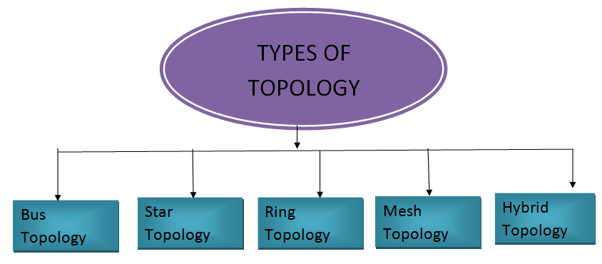 different types of network topology choice image