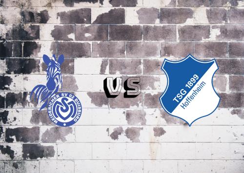 MSV Duisburg vs Hoffenheim  Resumen