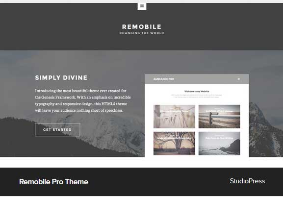 Remobile Pro theme Award Winning Pro Themes for Wordpress Blog : Award Winning Blog