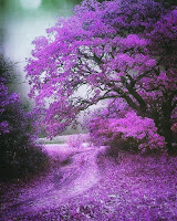 Purple trees as a symbol of Alzheimers
