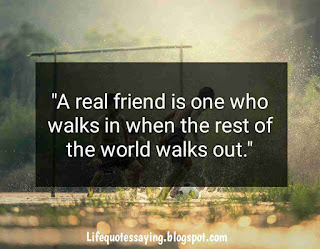 50 Friendship Quotes For Best Friends On Friendships Day Special
