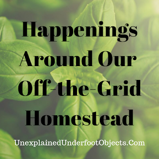 off the grid homestead