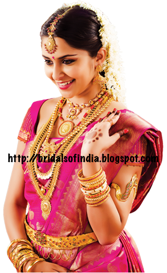 Fashion World South Indian Bride I Pink Wedding Saree And Traditional Jewelery