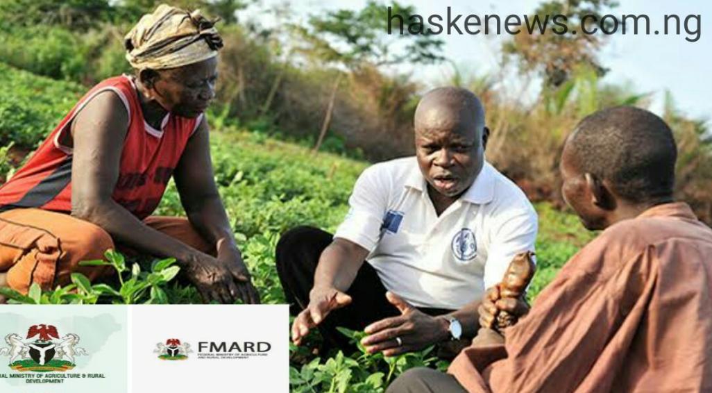 AFJP Farmers, Fertilizer Grant Fund Is Ready - nyscinfo
