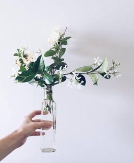 kwiaty w bukiecie Megan Markle jaśmin