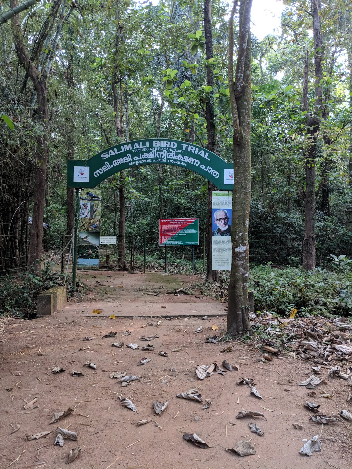 Entering the birding trail of Thattekad Bird Sanctuary, Kerala